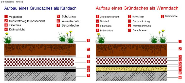 Schematischer Aufbau eines Kaltdachs und eines Warmdachs